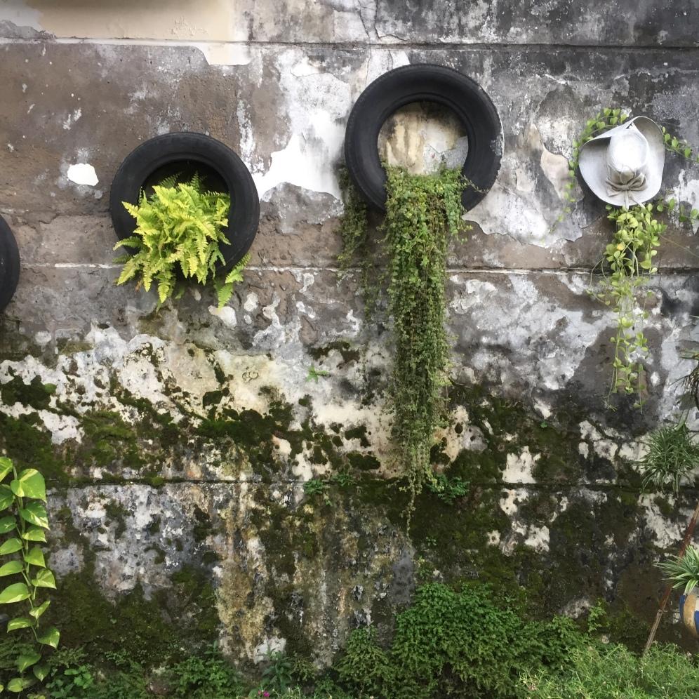 A small wall garden